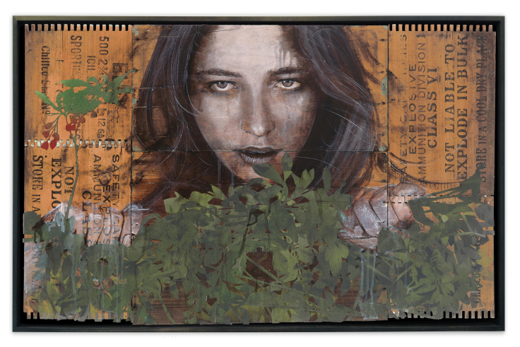 rone_poison_ivy_framed
